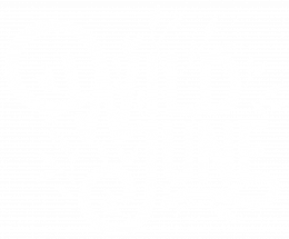 Wild June Photography
