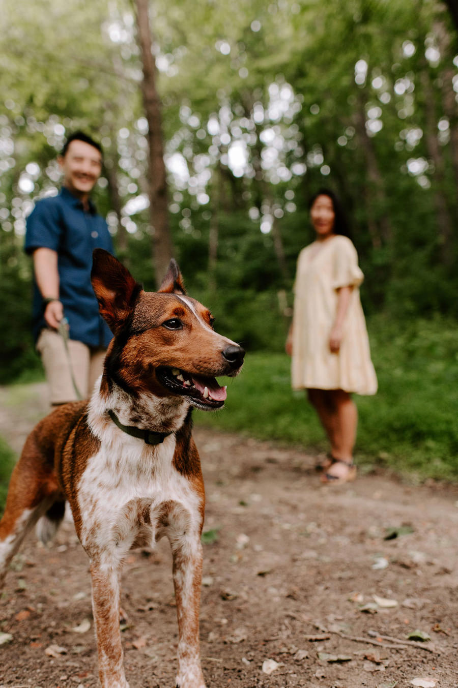 Woodsy Summer River Engagement